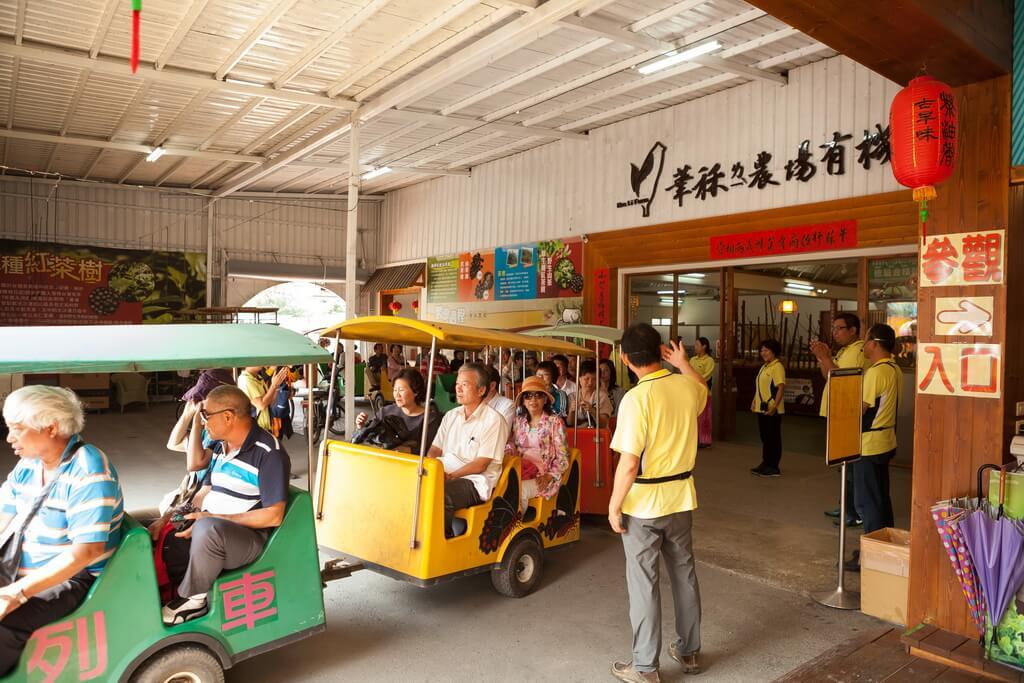 埔里景點-華秝茶油故事館