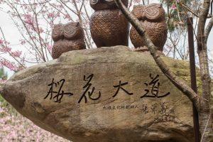 日月潭景點-九族文化村