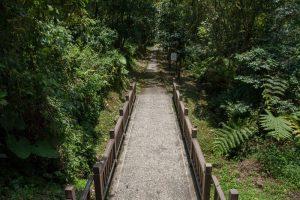 日月潭景點-大竹湖步道(日月湧泉)