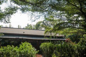 竹山景點-璞園