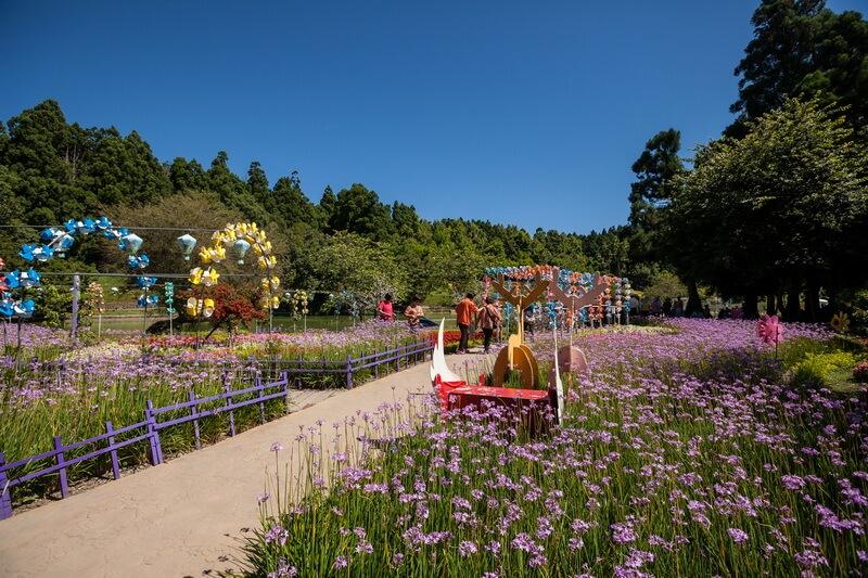 清境景點-小瑞士花園